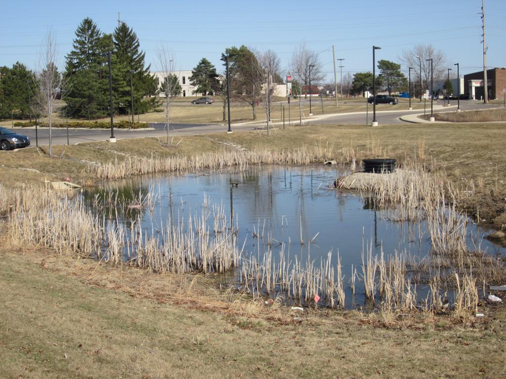 Civil 3d detention pond design for Design of detention pond